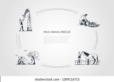 Wild animals rescue - people taking care of giraffe, horse, kangaroo, turtle vector concept set. Hand drawn sketch isolated illustration