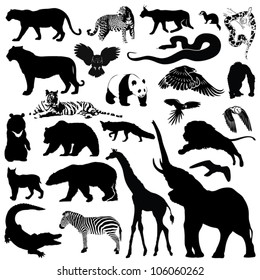 Wild animals silhouettes - vector illustrations