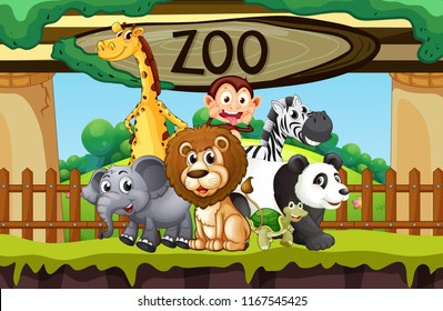 Image result for clipart zoo