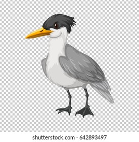 Wild bird on transparent background illustration