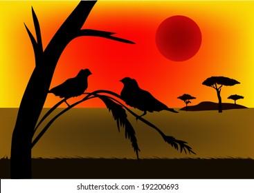 Wild birds in Africa at sunset.vector