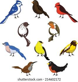 Wild Birds Set
