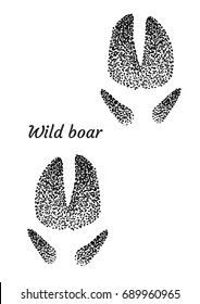 Wild boar footprint illustration, drawing, engraving, ink, line art, vector