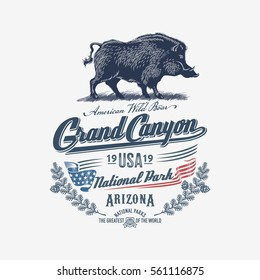 Wild boar, wild pig, national Park, Grand Canyon, blue, illustration, vector