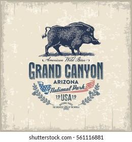 Wild boar, wild pig national Park Grand Canyon, vintage, illustration, vector