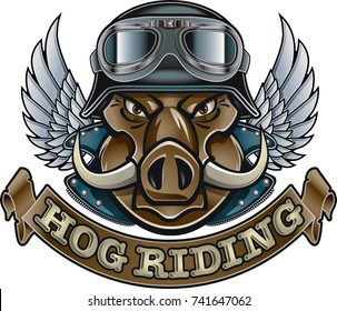 wild boar wearing helmet and goggles, wings and banner with text