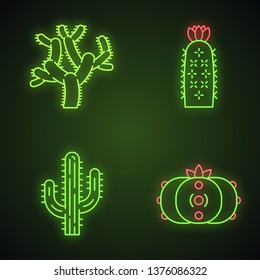 Wild cacti neon light icons set. American tropical plants. Succulents. Saguaro, peyote, hedgehog, teddy bear cactuses. Glowing signs. Vector isolated illustrations