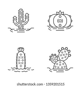 Wild cactuses in ground linear icons set. Spiny plant. Green succulents. Saguaro, prickly pear, peyote, hedgehog cactus. Thin line contour symbols. Isolated vector outline icons. Editable stroke