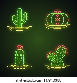 Wild cactuses in ground neon light icons set. Spiny plants. Green succulents. Saguaro, prickly pear, peyote, hedgehog cactus. Glowing signs. Vector isolated illustrations