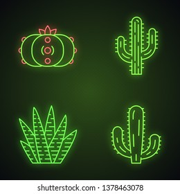 Wild cactuses neon light icons set. Succulents. Cacti collection. Saguaro, peyote, mexican giant and zebra cactuses. Glowing signs. Vector isolated illustrations