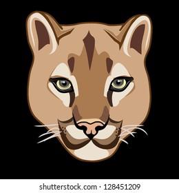 wild cat  cougar vector