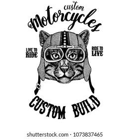Wild cat Fishing cat Biker, motorcycle animal. Hand drawn image for tattoo, emblem, badge, logo, patch, t-shirt