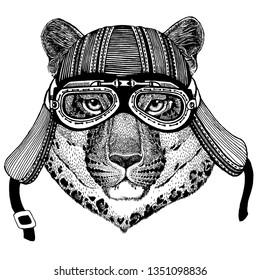 Wild cat, leopard, jaguar, panther, biker, animal wearing motorcycle helmet. Hand drawn image for tattoo, emblem, badge, logo, patch, t-shirt.