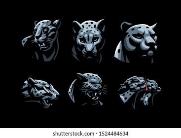 Wild cats. Jaguar, cheetah, leopard, panther. Set of vector illustrations.