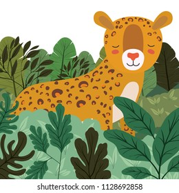 wild cheetah in the jungle scene