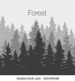 Wild coniferous forest background. Pine tree, landscape nature, wood natural panorama. Outdoor camping design template. Vector illustration
