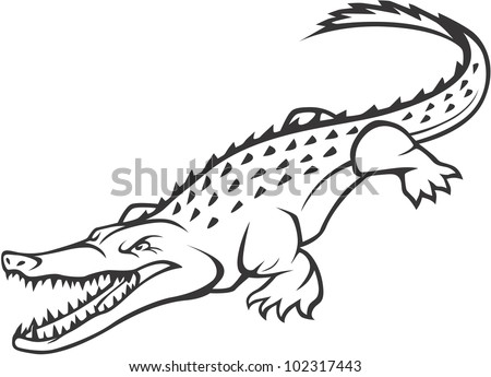 Wild crocodile illustration image vectorielle de stock - Dessiner un crocodile ...