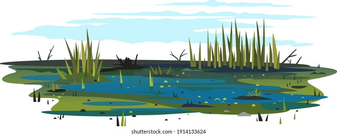 Wild danger swamp with dirty water and various plants isolated illustration, dead trees with bulrush plants, clipart of terrible mystical place, swampy pond with reeds, overgrown pond