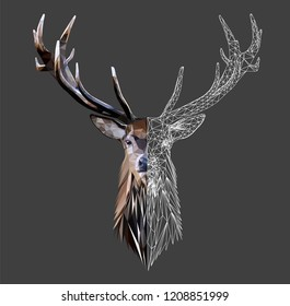 Wild deer head with horns on grey background, low poly triangular and wireframe vector illustration isolated. Polygonal style trendy modern logo design. Suitable for printing on a t-shirt.