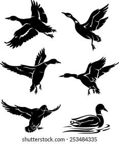Wild Duck Silhouettes