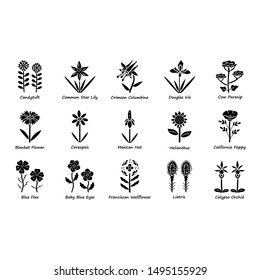 Wild flowers glyph icons set. Spring blossom. California wildflowers with names. Garden blooming plants inflorescences. Botanical bundle. Calflora. Silhouette symbols. Vector isolated illustration