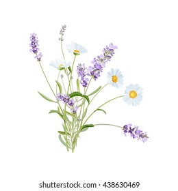 Wild flowers. Lavender and Daisy