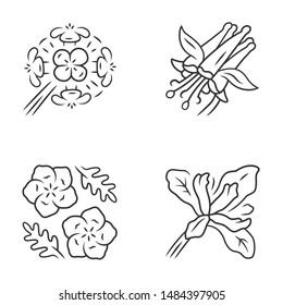 Wild flowers linear icons set. Franciscan wallflower, crimson columbine, blue eyes, douglas iris. Blooming wildflowers. California flora. Thin line contour symbols. Isolated vector illustrations