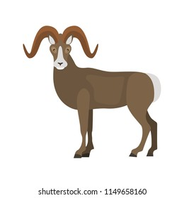 Wild goat color vector icon. Flat design