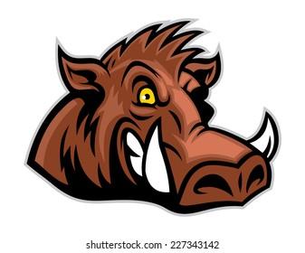 wild hog head