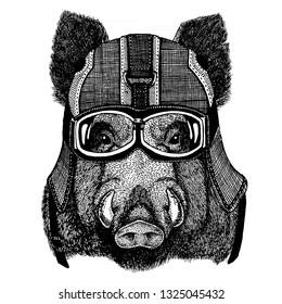 Wild hog, pig, aper, boar. Animal wearing motorycle helmet. Image for kindergarten children clothing, kids. T-shirt, tattoo, emblem, badge, logo, patch