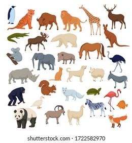 Wild home pets set. Wild animals bison elephant fox rhinoceros deer polar bear arctic fox, color cartoon vector, panda giraffe lion, elk, chimpanzee and domestic dog, cat, horse, duck, donkey.