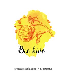 Wild honey hive in a tree, honeycomb, a swarm of bees in the hive lime, bee hive