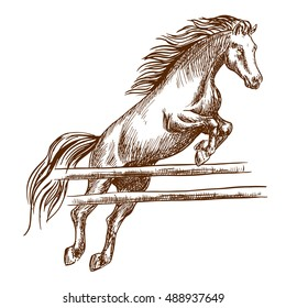Wild horse jumping high and leaping over wooden barrier. Brown stallion overcoming fence. Vector thin line sketch
