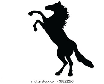 wild horse mustang vector silhouette
