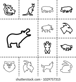 Wild icons. set of 13 editable outline wild icons such as hippopotamus, bear, goat, buffalo, cangaroo, rabbit, hog