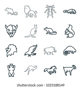 Wild icons. set of 16 editable outline wild icons such as alligator, eagle, lion, bear, mouse, squirrel, horse, goat, chameleon, hog, ant