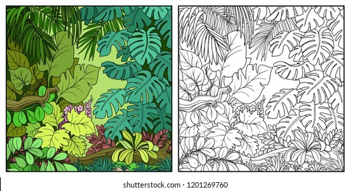 Wild jungle with big palm leaves color and black contour line drawing for coloring on a white background