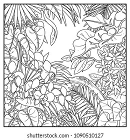 Wild jungle black contour line drawing for coloring on a white background