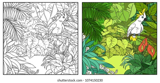 Wild jungle with cockatoo parrot perched on branch color and black contour line drawing for coloring on a white background