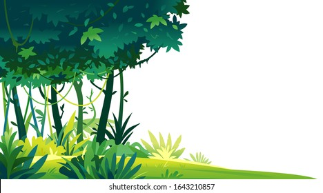 Wild jungle forest with trees, bushes and lianas on white background, decorative template composition of jungle plants, dense vegetation of the jungle, topical forest plants