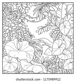 Wild jungle with lianas black contour line drawing for coloring on a white background