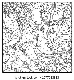 Wild jungle with Major Mitchell's Cockatoo opens wings black contour line drawing for coloring on a white background