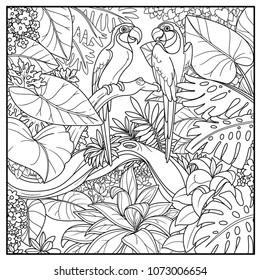 Wild jungle with two parrots of macaw sit on branch over  forest lake black contour line drawing for coloring on a white background