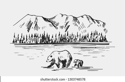 Wild natural landscape with bears in the river. Alaska region. Hand drawn illustration converted to vector.