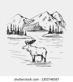 Wild natural landscape with lake, moose, mountains. Alaska region Hand drawn illustration converted to vector.
