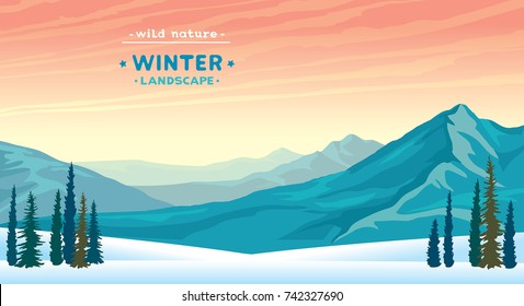Wild nature illustration with blue mountains, snowdrifts and pine tree on a sunset sky. Winter vector landscape.
