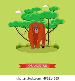 Wild orangutan vector illustration in flat style. Monkey - zoo animal design elements and icons.