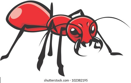 Wild Red Ant Illustration
