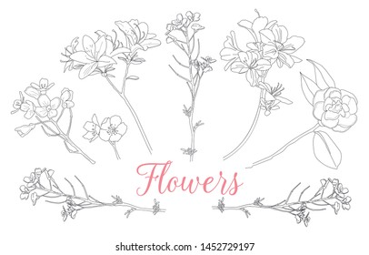 Wild rose flowers drawing and sketch with line-art on white backgrounds. Monochrome vector illustrations. For pattern, logo, template, banner, posters, invitation and greeting card design.