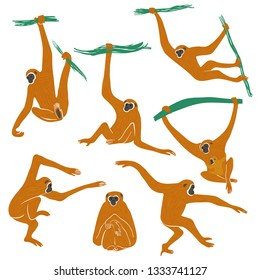 Wild set of funny monkeys. Isolated Gibbon icons in action: standing, sitting, hanging, jumping.